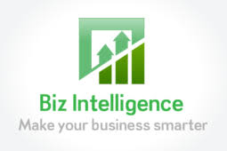 Biz Intelligence